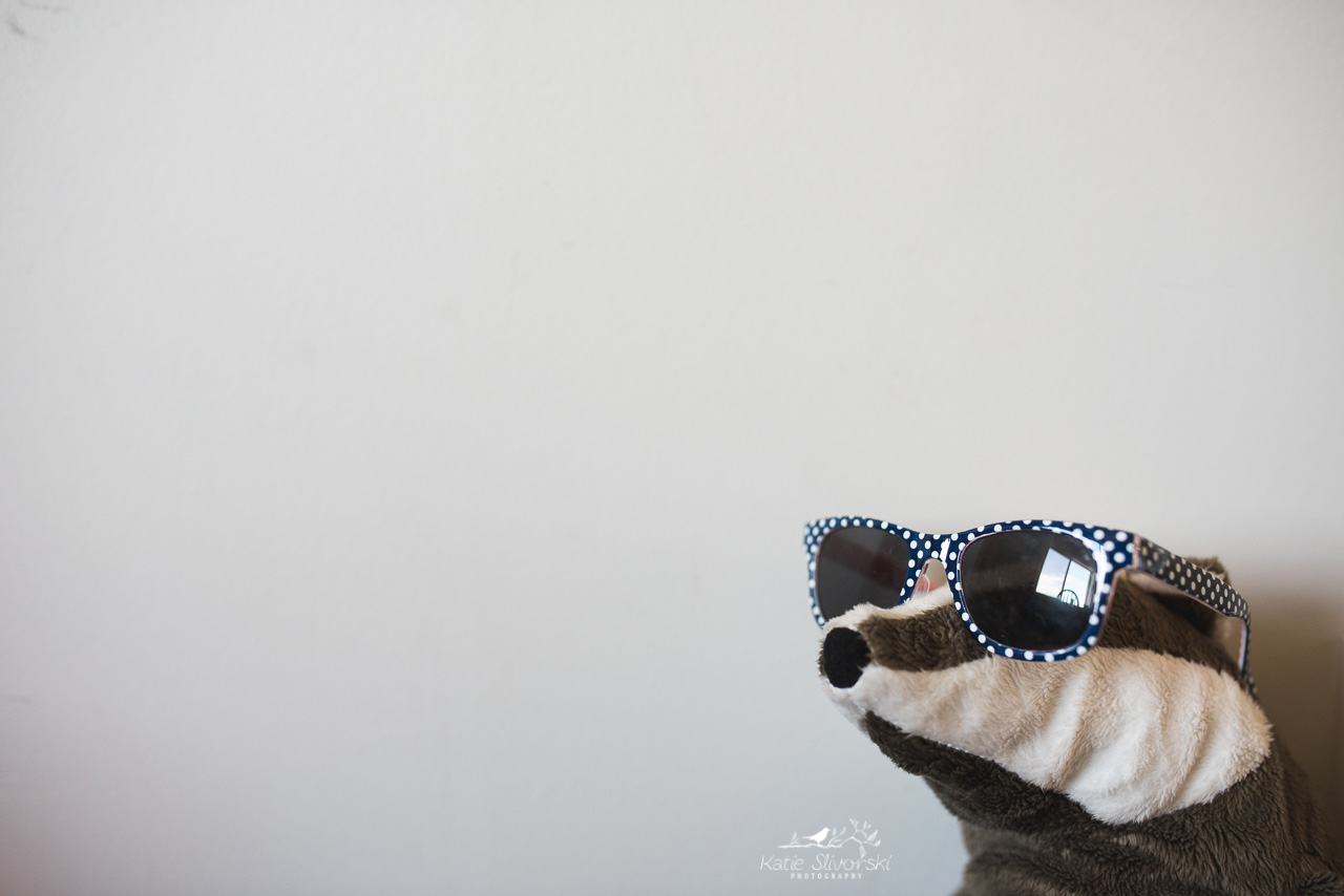 a badger toy with glasses on