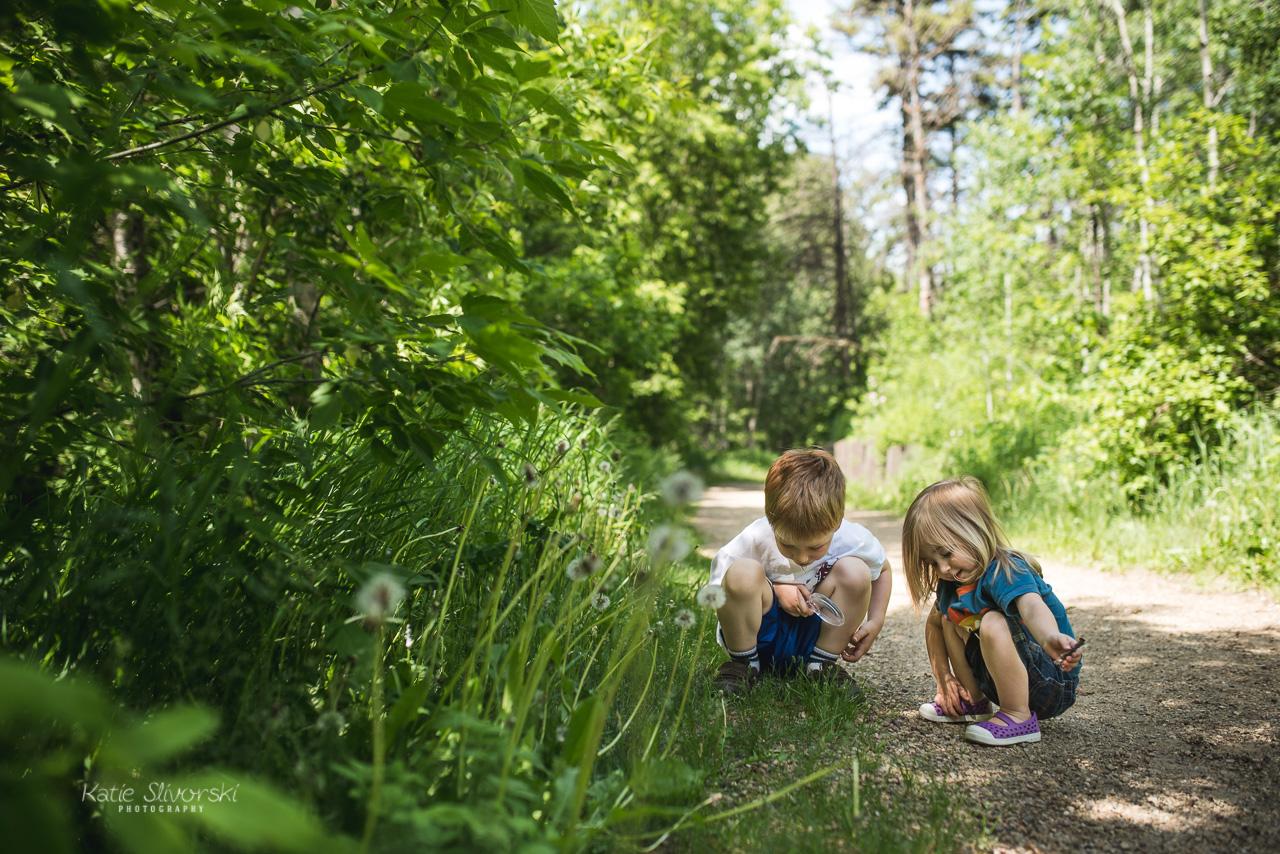 Photo of kids playing in Edmonton ravine