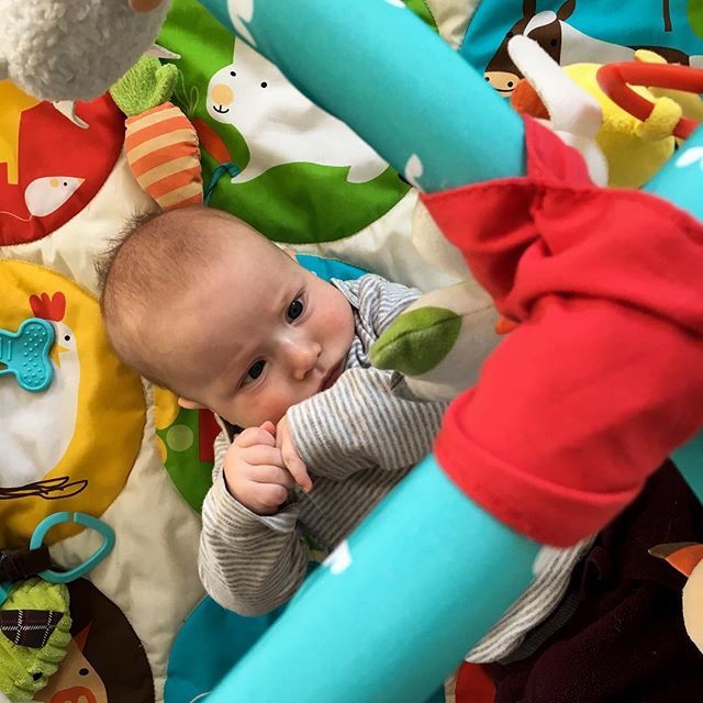 Toy staredown. (AKA baby gets play mat time so I can actually get some dishes done!) #baby #momlife #yegphotographer #camerayouhave #hescomingforyoumirrorcow