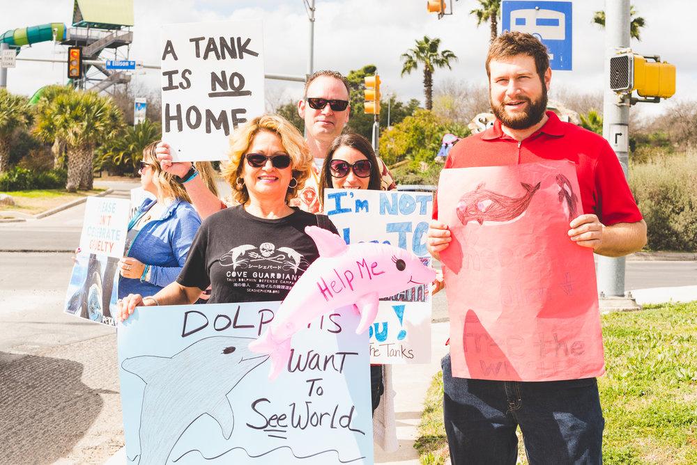 """Dolphins want to SEE world."" / 2/13/16 / SeaWorld / San Antonio, TX"
