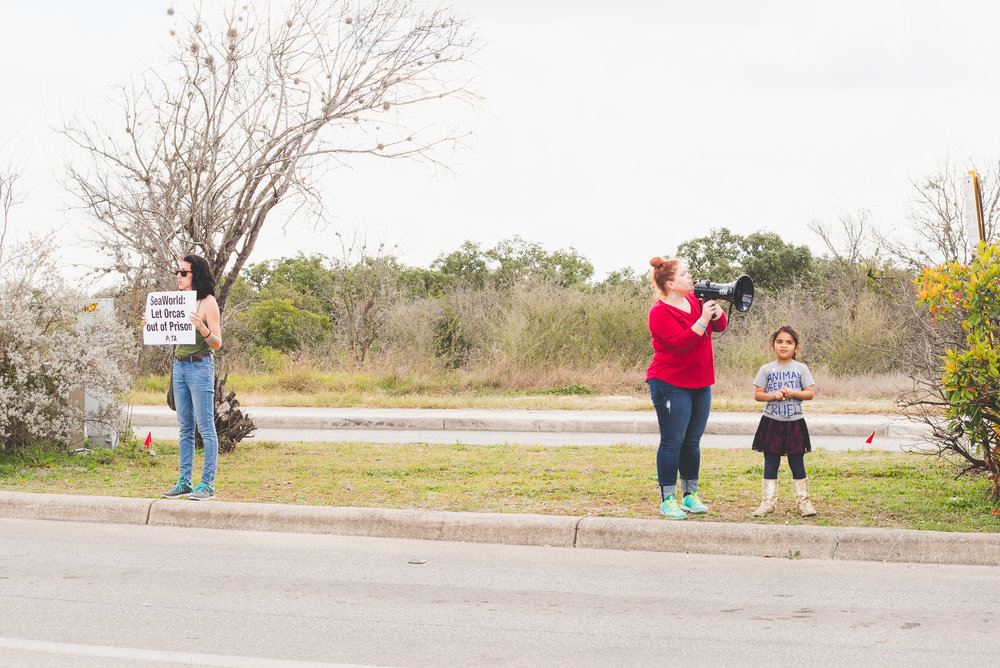 This little girl is six years old, and one of the most vocal people at the protest. / 2/13/16 / SeaWorld / San Antonio, TX