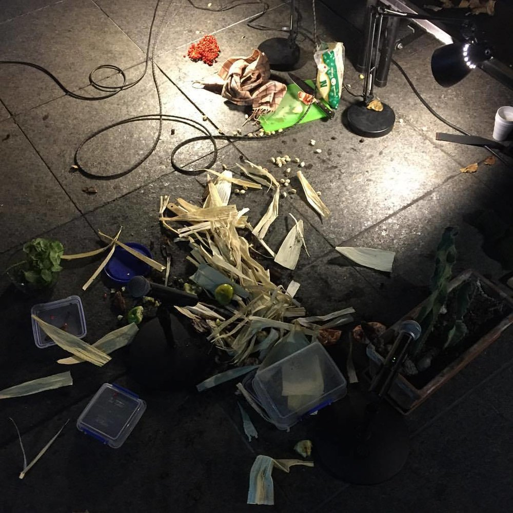"Performance of John Cage's ""Child of Tree"" at the Museum of Contemporary Art Chicago, 10.11.15"