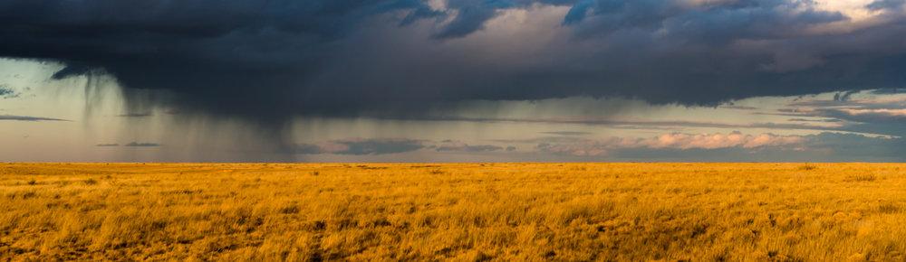 New Mexico Rain