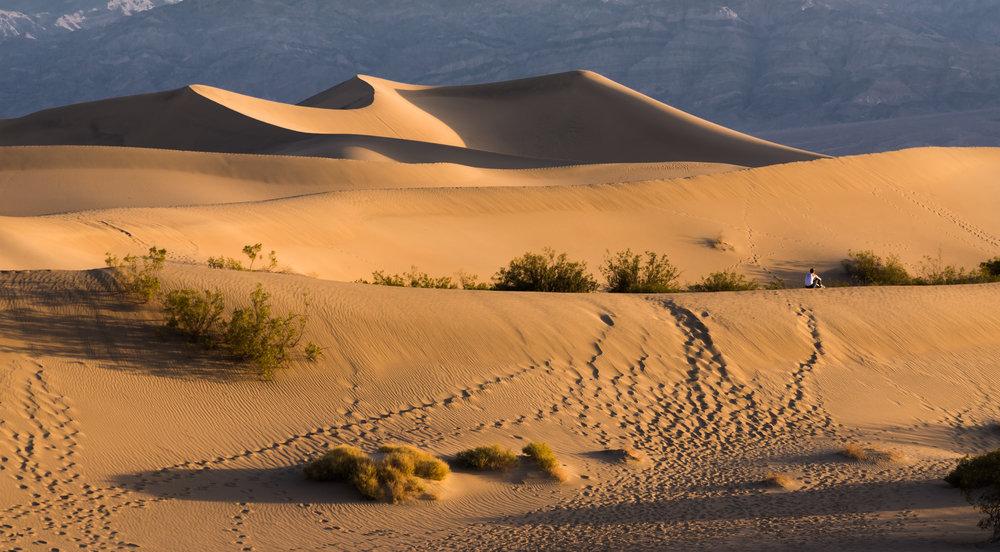Sitting: Mesquite Dunes