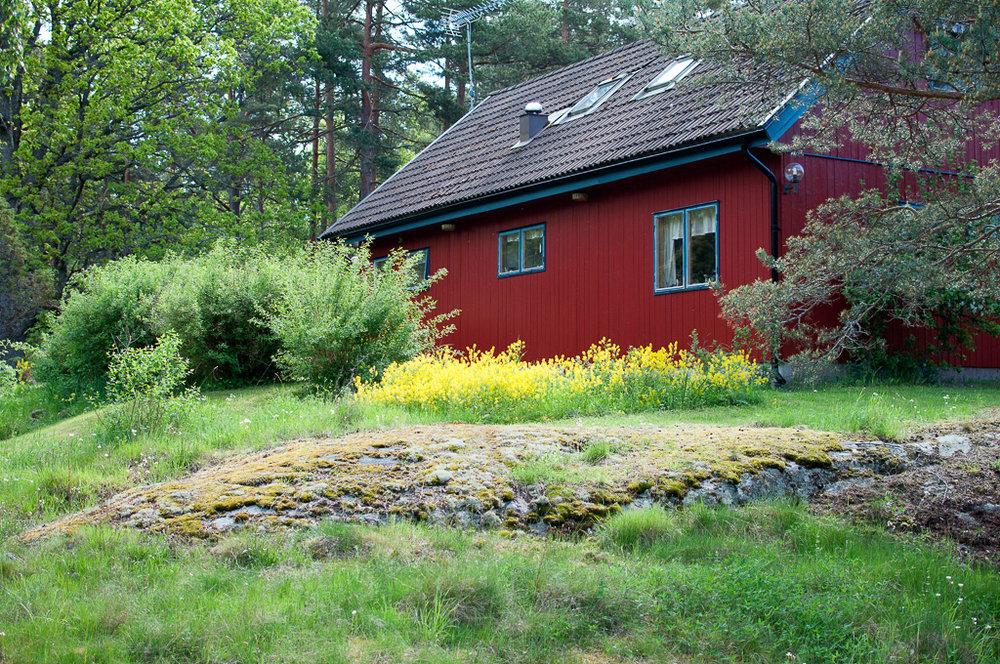 Djuro Stockholm 1.jpg