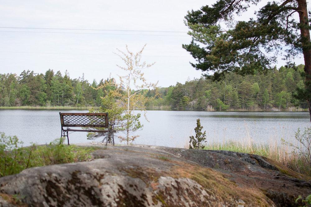 Djuro Stockholm 3.jpg
