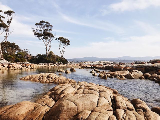{bay of fires} we drove all along the coast from #sthelens to #thegardens /great 📸 at #binalongbay & #burnsbay