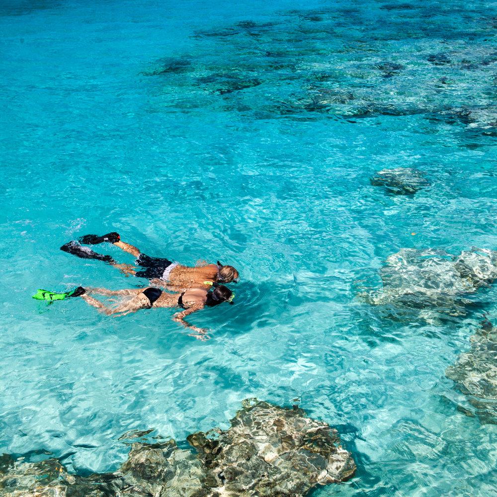 Snorkeling Couple.jpg