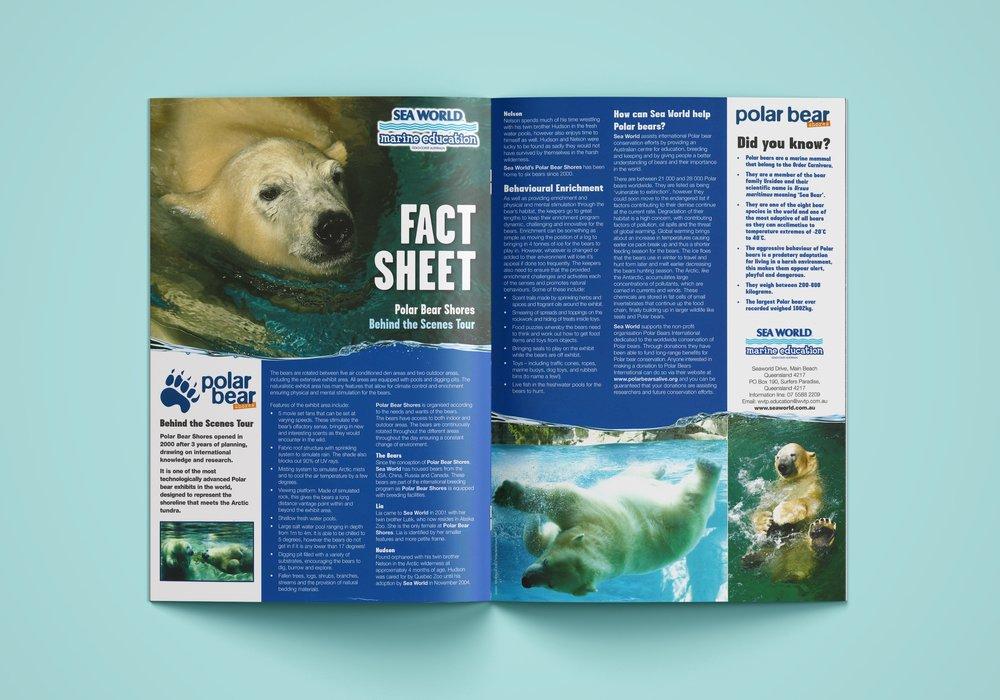 Sea World Flyer 2.jpg