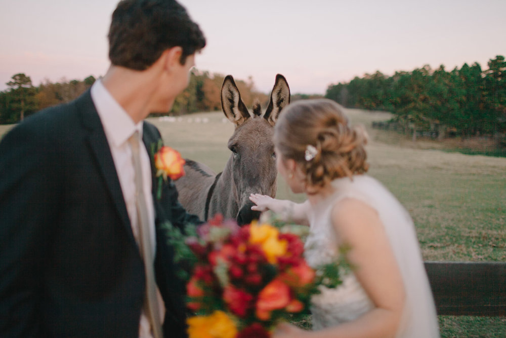 Little Rock Arkansas Moss Mountain Farm Wedding - Paige and Cory-027.jpg