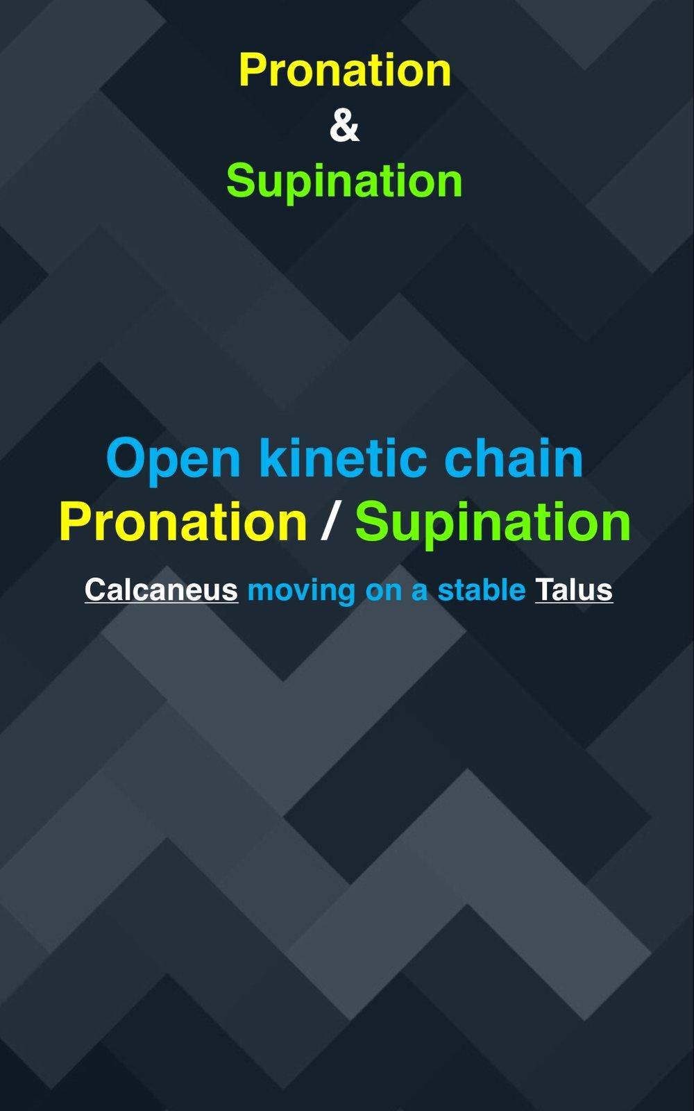 Pronation : Supination03.jpg