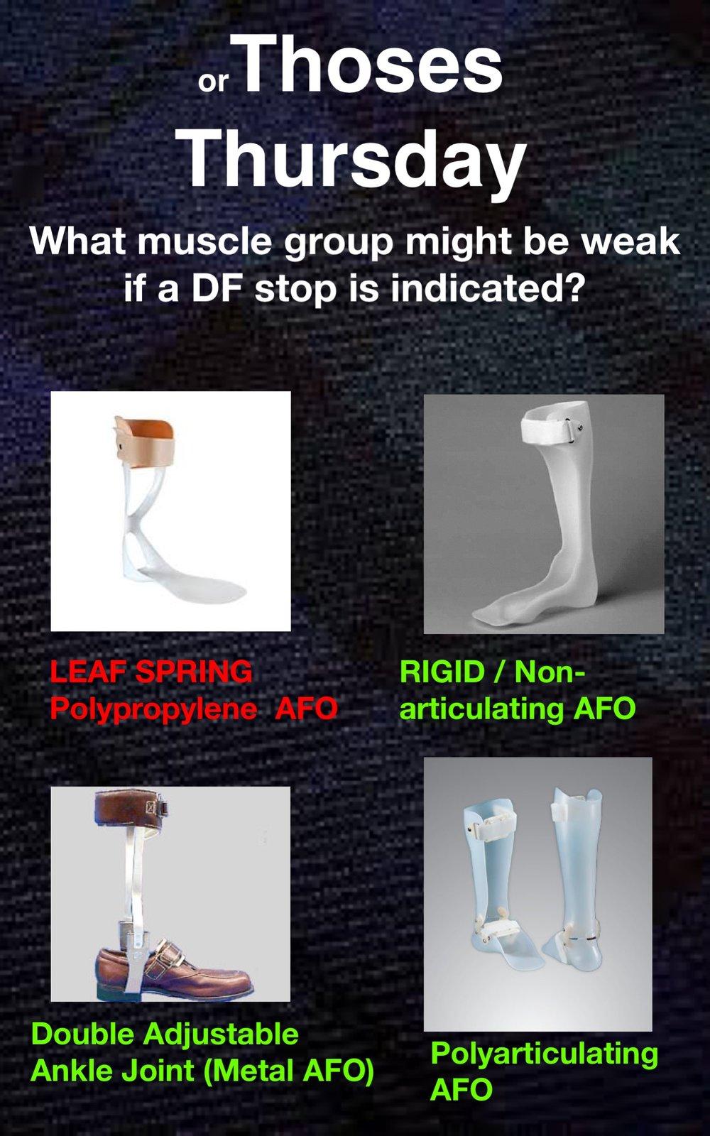 Orthoses12.jpg