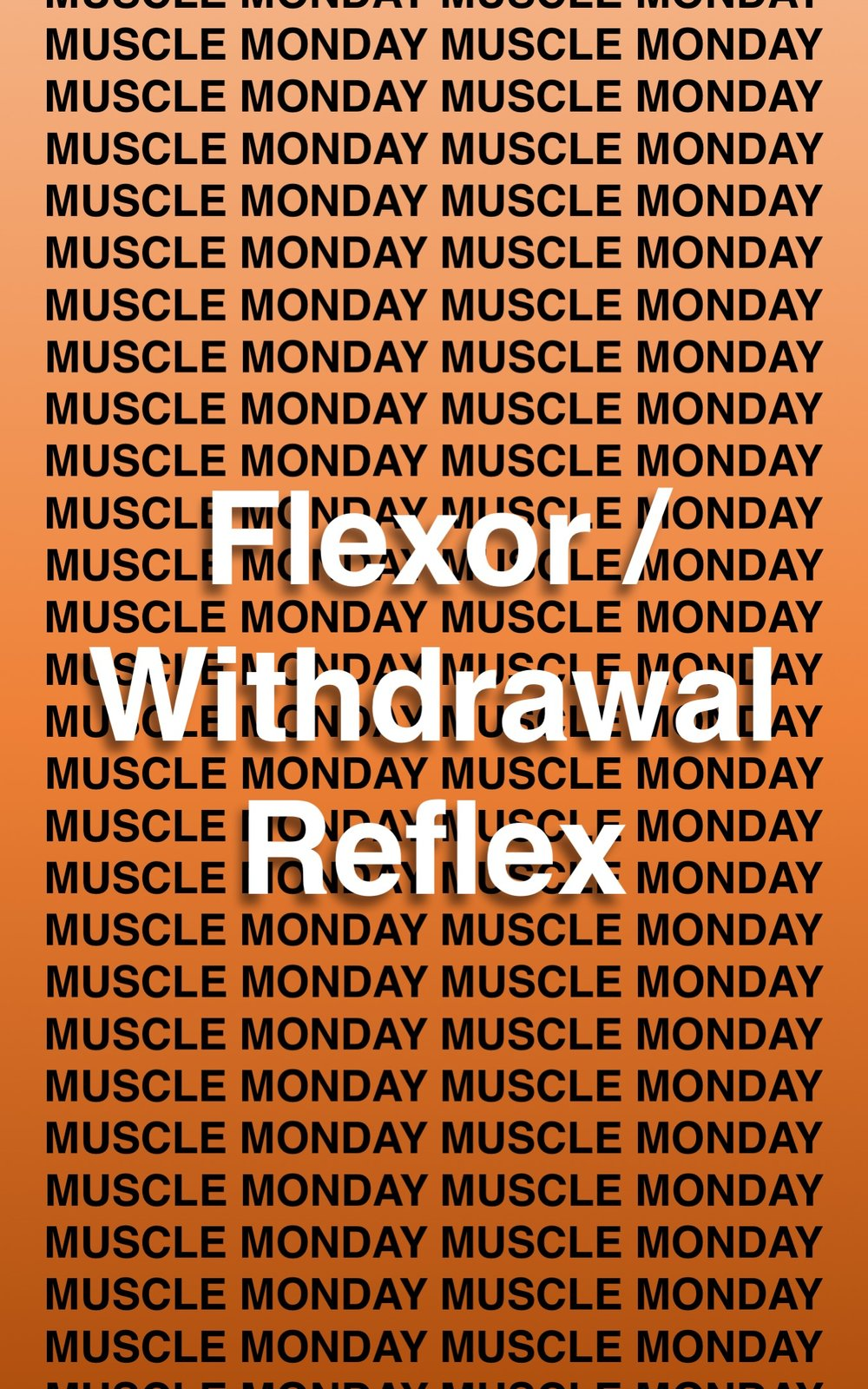 FlexionReflex01.jpg