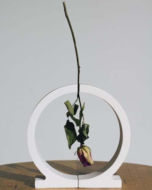 A Vase For Dead Flowers Amy Q Design