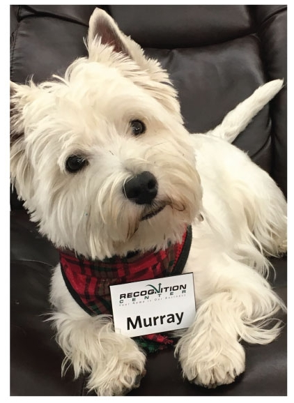 Murray - An essential part of the Recognition Center Team