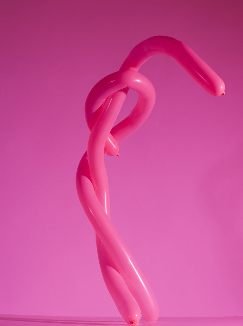 Sharma_Abhishek_shades of pink balloon sculptures 5.JPG