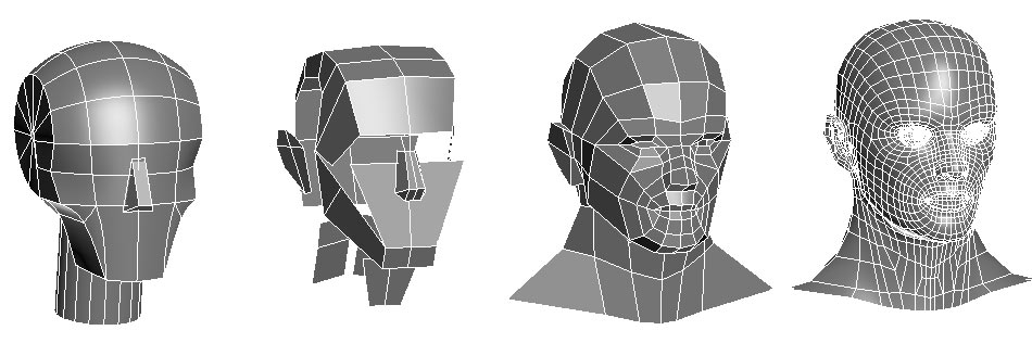 Loomis Head Recreation in 3D