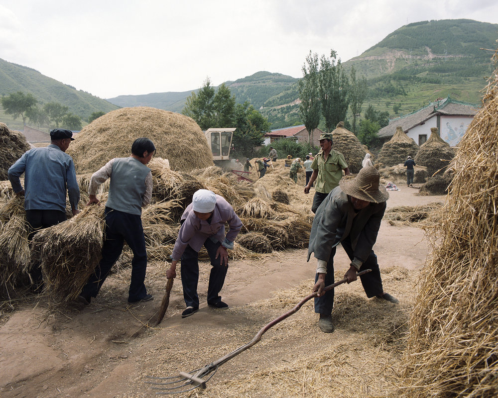 I2007 - in He Shang  Pu the whole village at work to bring the harvest in.