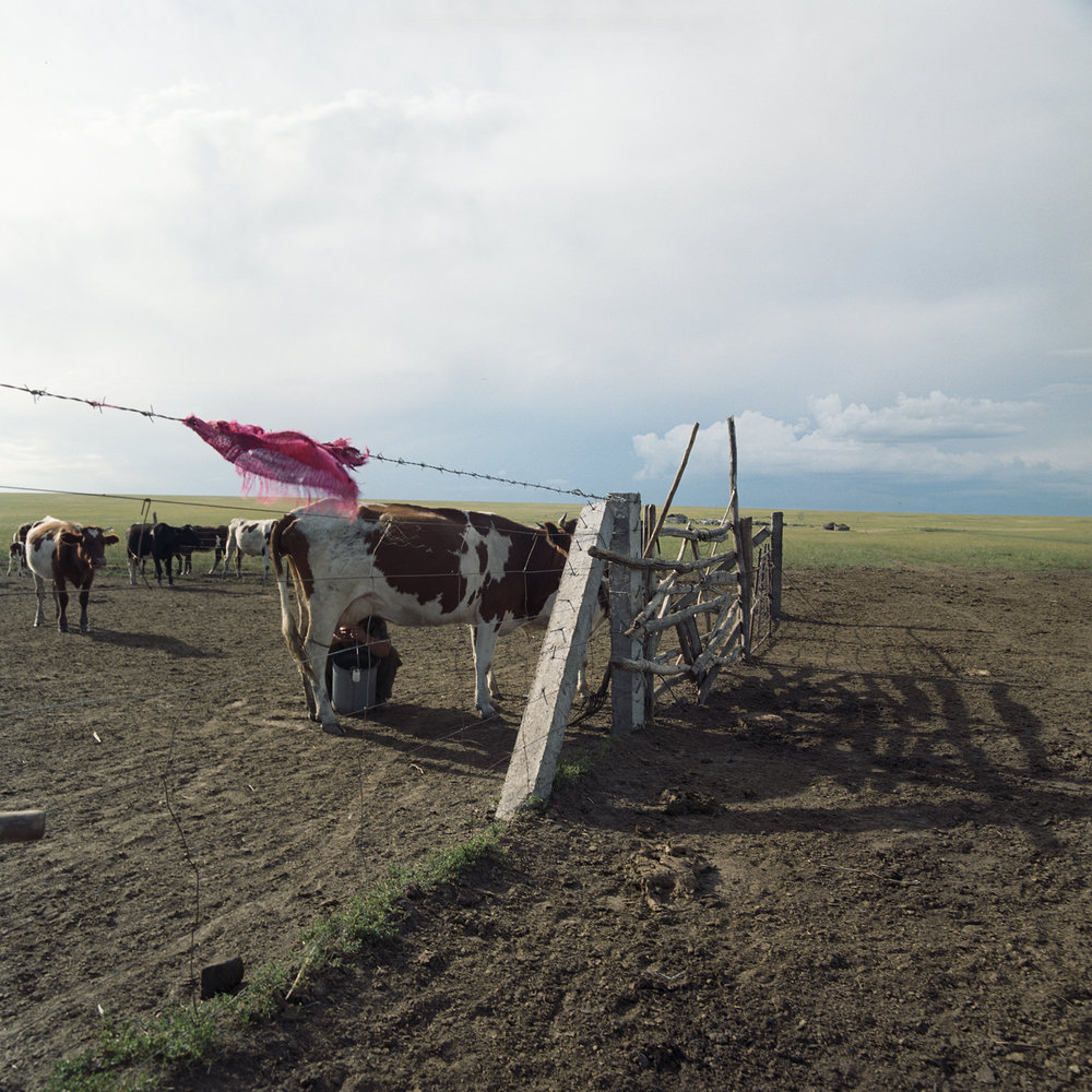 2008 Inner Mongolia - almost a Dutch painting.