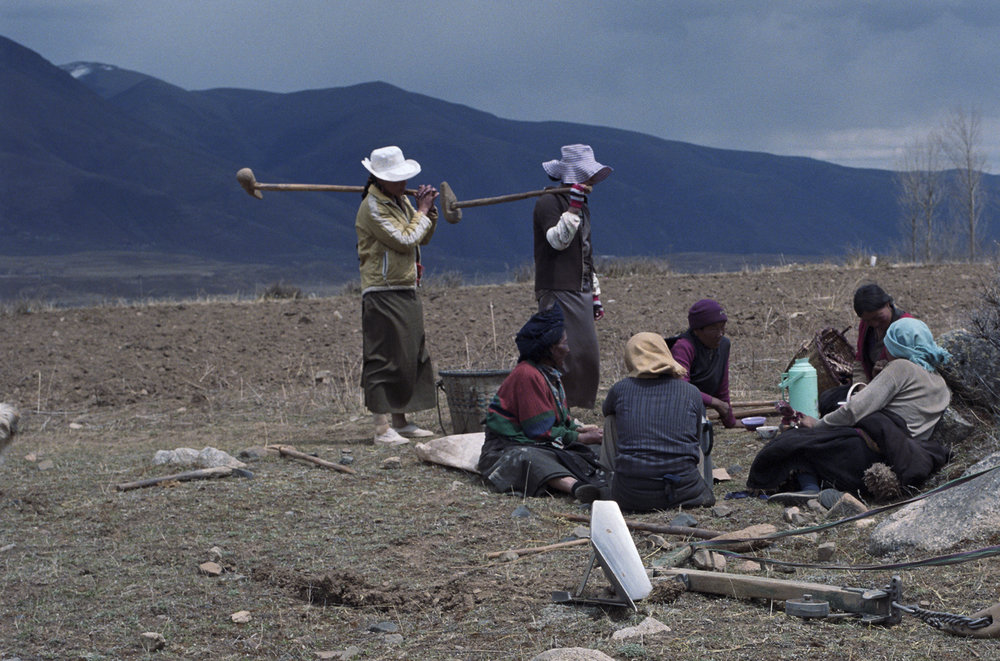 2010, near Kandze - men join the women for lunch. The equipment over their shoulder is used to break up lumps of hard soil. But there is a metal plow in the forefront. A yak will be used to pull it through the earth.