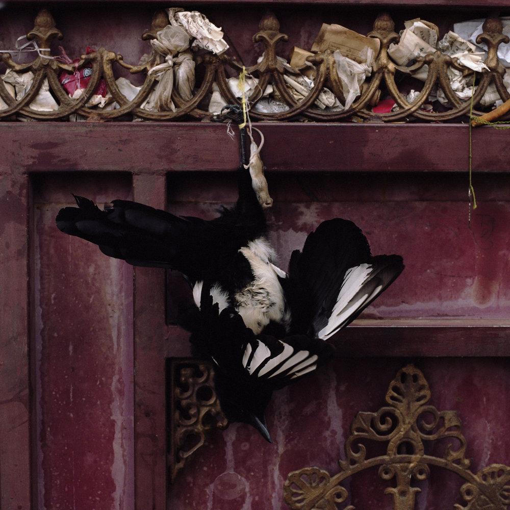 2010, Ya Chi - door of a monastery.