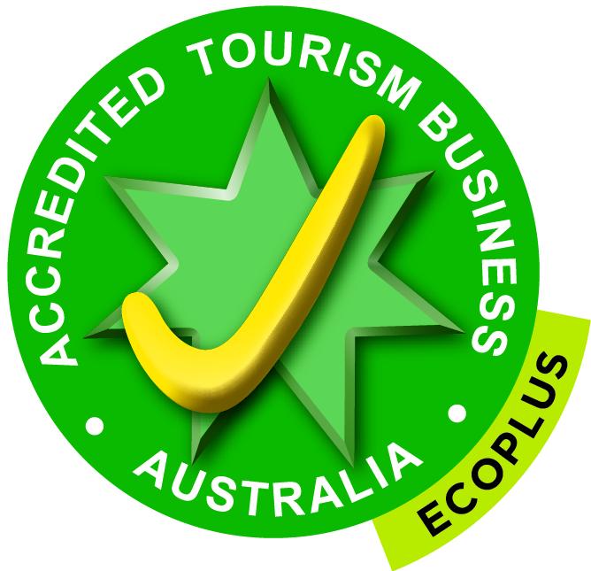 1. ATAPEmboss EcoPlus Logo (3).jpg