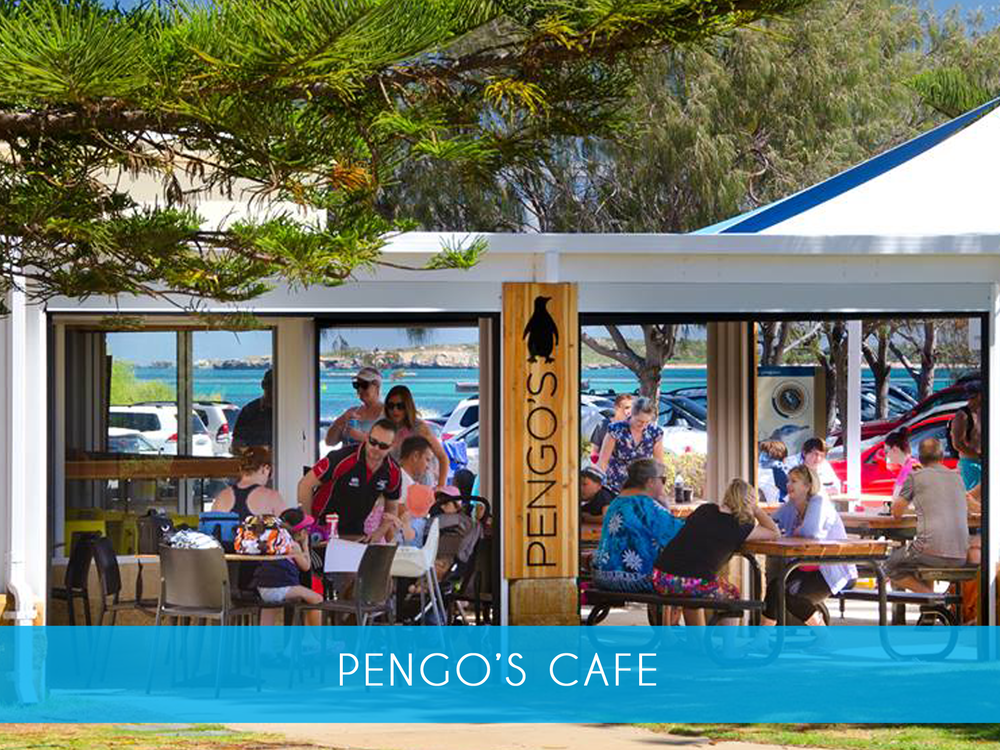 PENgos cafe     Open daily 8am to 4.30pm for great coffee & cakes, gourmet burgers, awesome fish & chips & fresh salads. Located right next door to Rockingham Wild Encounters, Pengos is the ideal place for a quick bite to eat for breakfast or lunch, before or after your visit to Penguin Island.     MORE INFO
