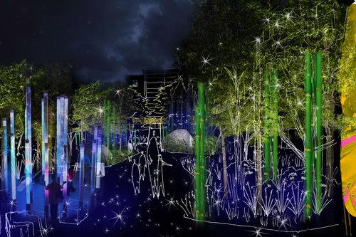 The Origins Garden by night