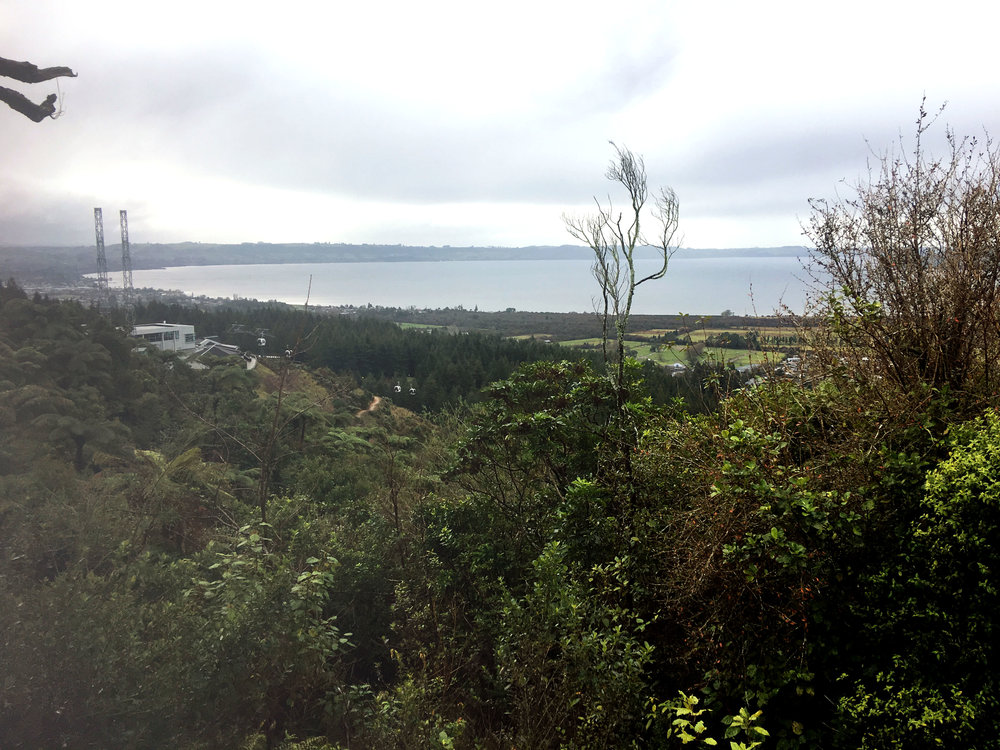 Views of Lake Rotorua from top of Ngongotahā Station