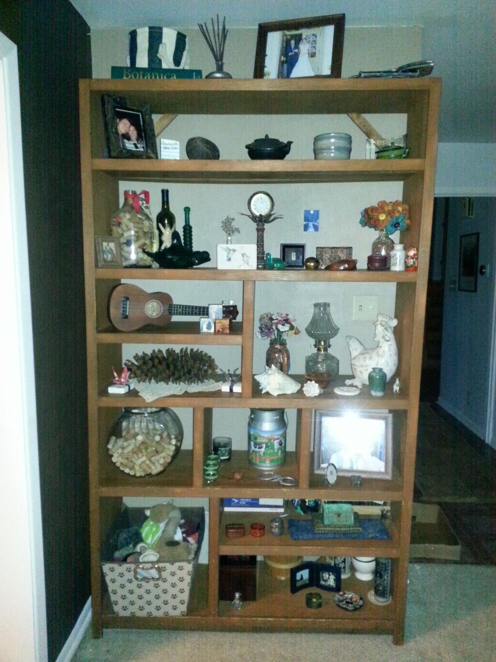 stephen shelf source1.jpeg