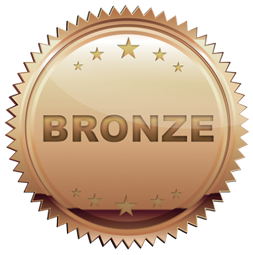 Image result for bronze icon