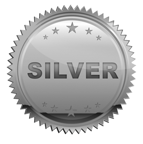 Image result for silver icon