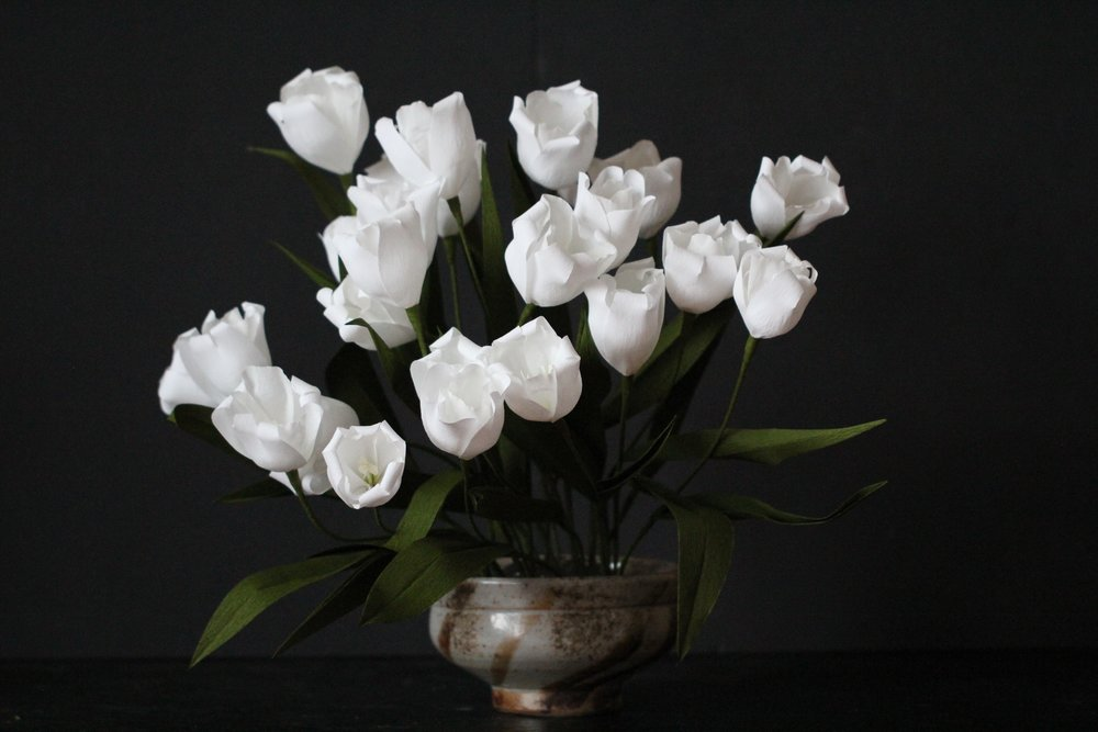 Florabeane Paper Tulips