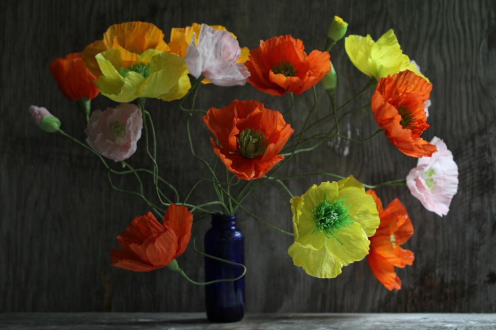 Florabeane Paper Poppies