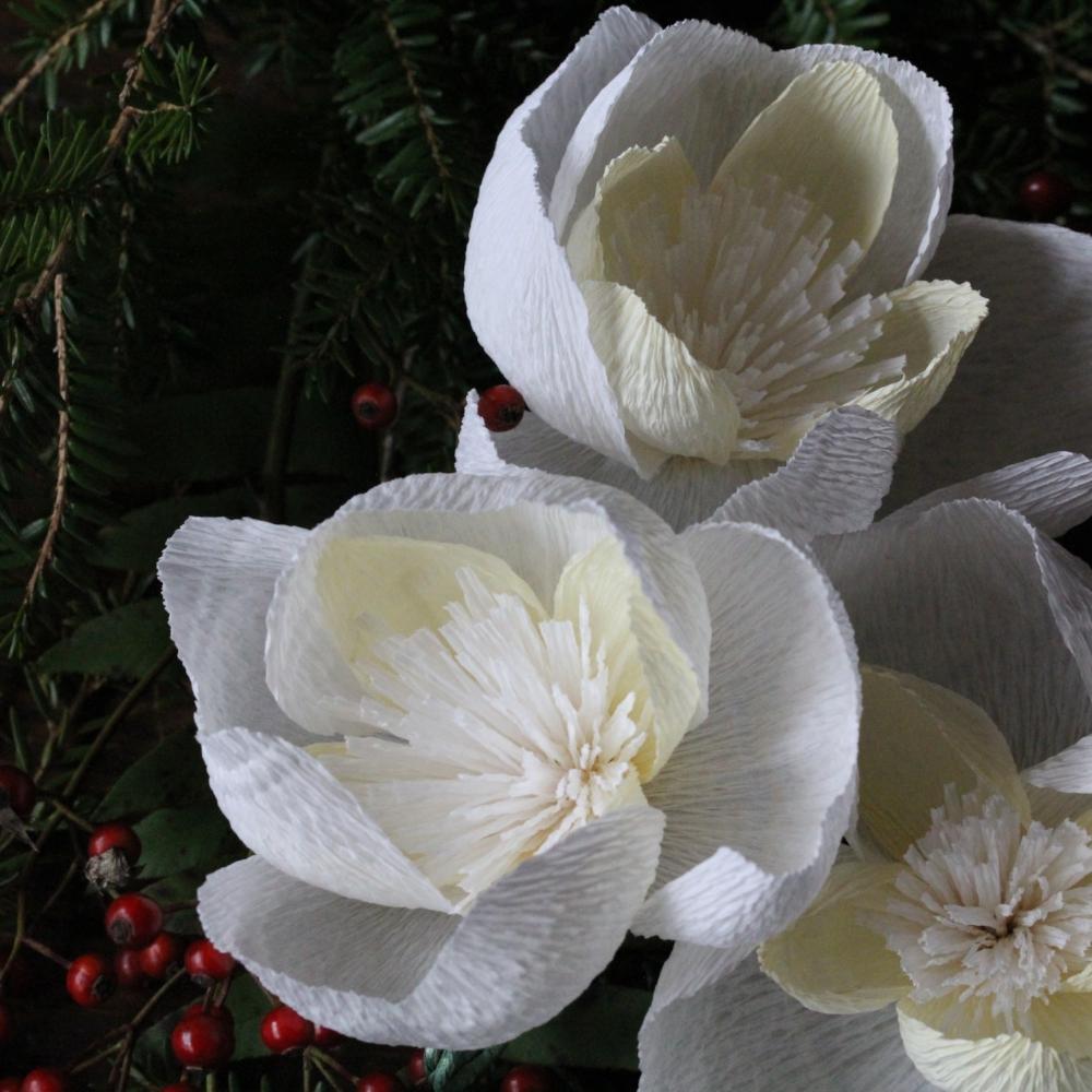Florabeane Paper Peonies
