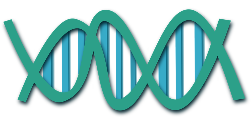 dna-308919_1280 (1).png