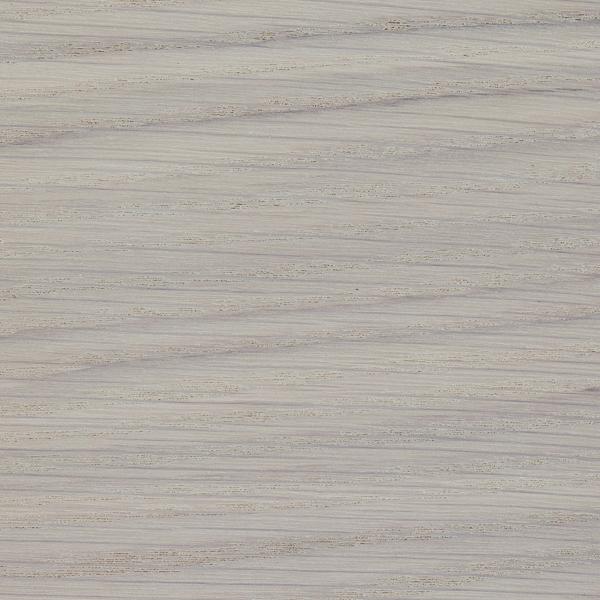 Shoreline on Flych Veneer