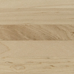 Natural Maple Flych Veneer