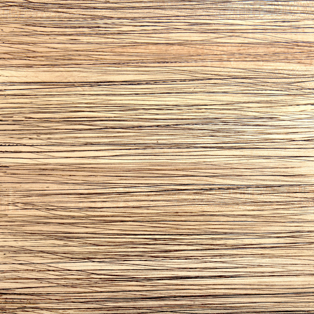 Reed on Fuse Hardwood