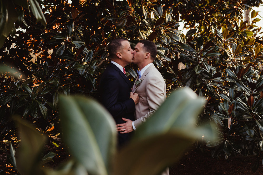 The grooms kissed in the magnolia tree outside by the barn at the rustic styled engagement session with Rose Trail Images at Windy Hill Farm near Raleigh, NC.