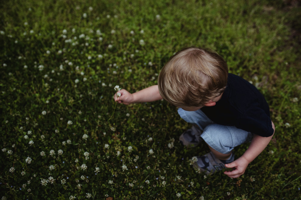 The little boy looks for clovers during his family photo session with Rose Trail Images in Rolesville, North Carolina.