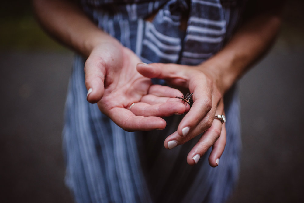 A firefly landed in Kristin's hands during their engagement shoot in Raleigh with Rose Trail Images.