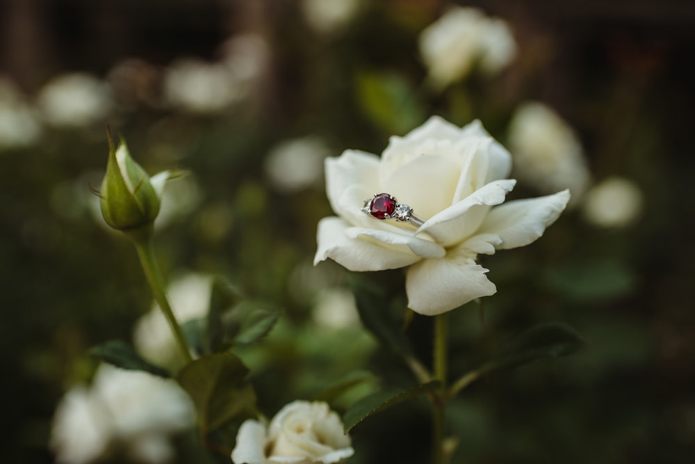 The unique engagement ring features a ruby in the middle with a diamond on each side, placed in a white rose during the engagement session with Rose Trail Images.