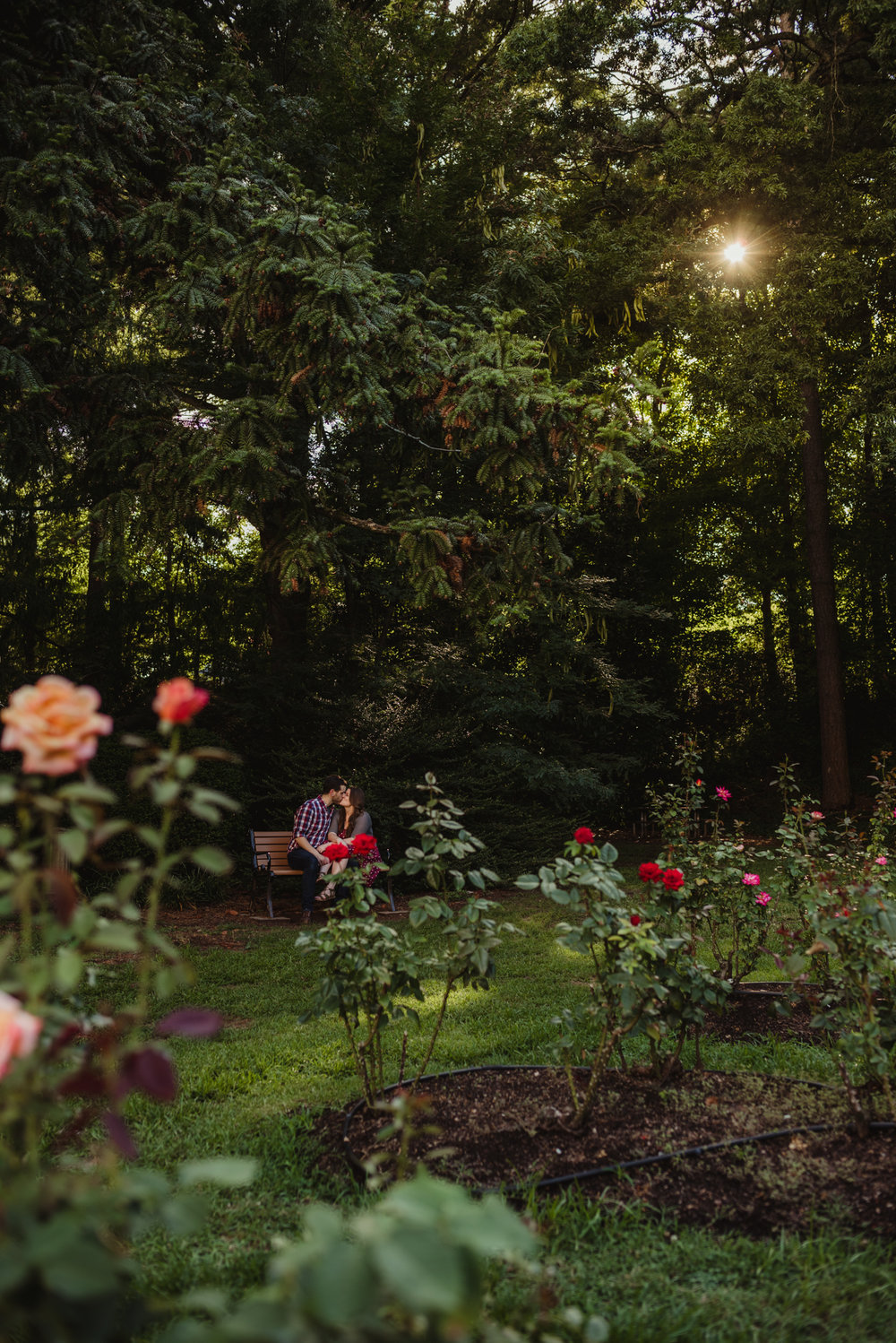 The bride and groom to be sit on a bench and kiss at the Raleigh Rose Garden during their engagement session with Rose Trail Images.