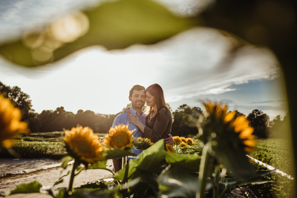 The bride and groom to be hold each other in the sunflowers for their engagement pictures with Rose Trail Images at their family farm in Benson, North Carolina.