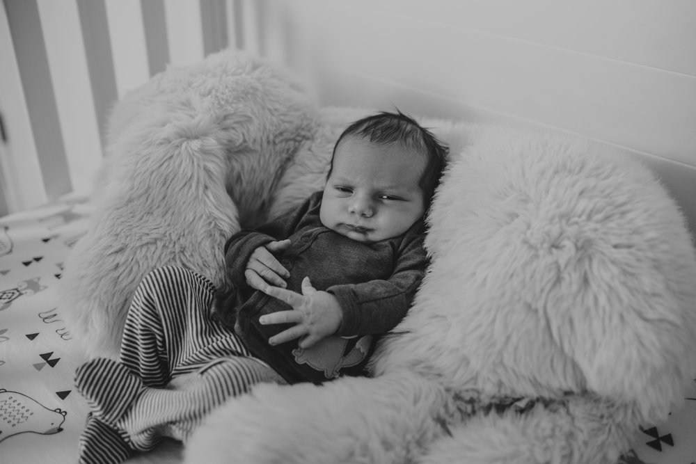 The newborn baby lies in his crib with stuffed animals in his nursery in Wake Forest, a black and white image by Rose Trail Images.