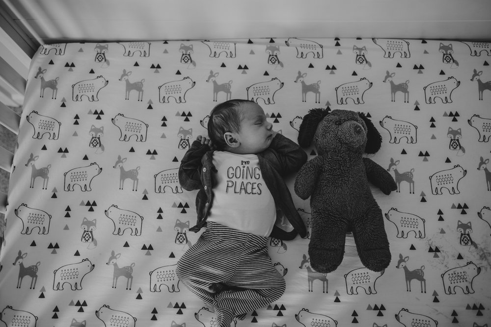 The newborn baby lies in his crib with his Dad's stuffed animal in his nursery in Wake Forest, a black and white image by Rose Trail Images.