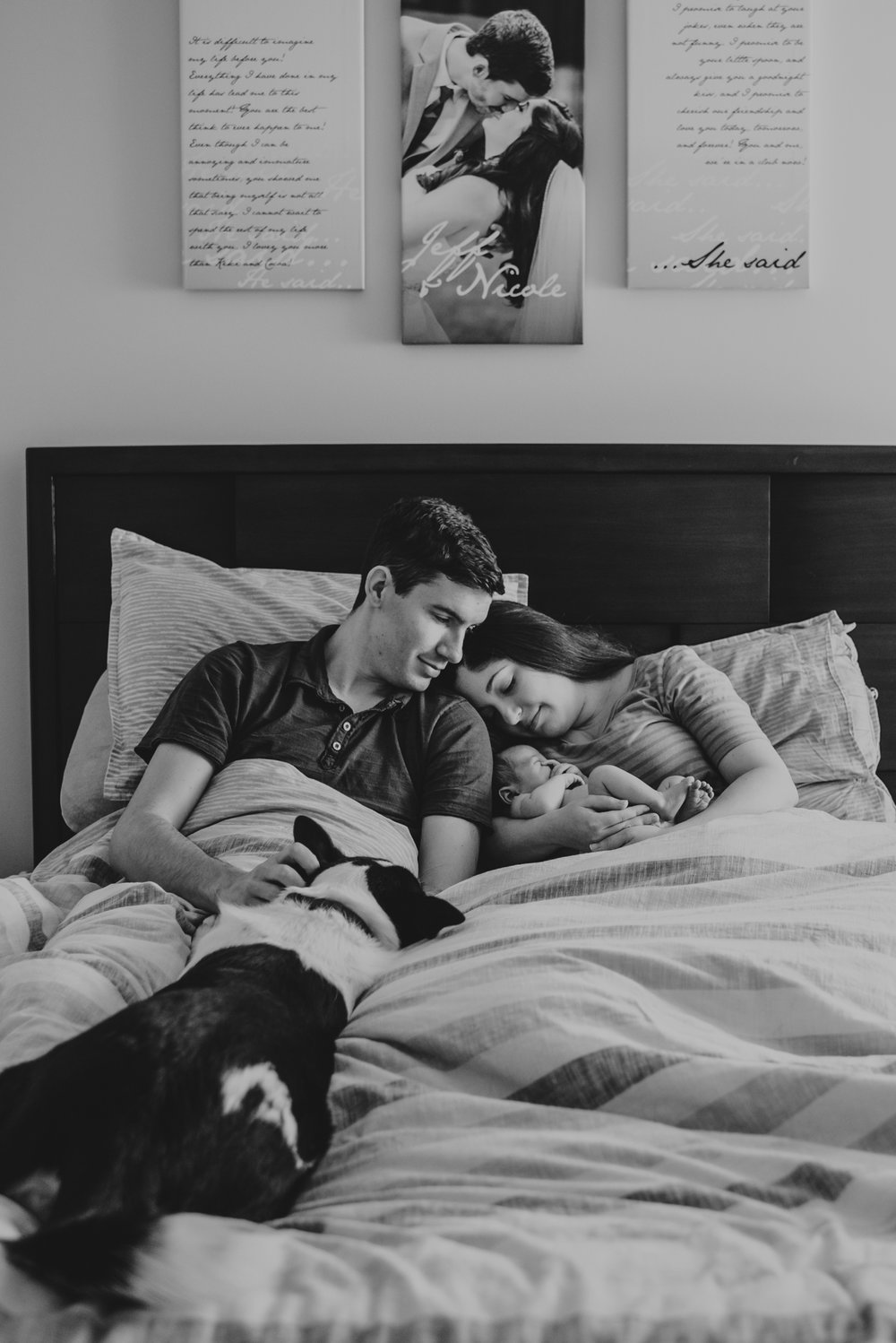 The new family snuggles with their newborn son and their puppy in bed in Wake Forest, a black and white image by Rose Trail Images.