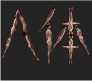 人體.jpg