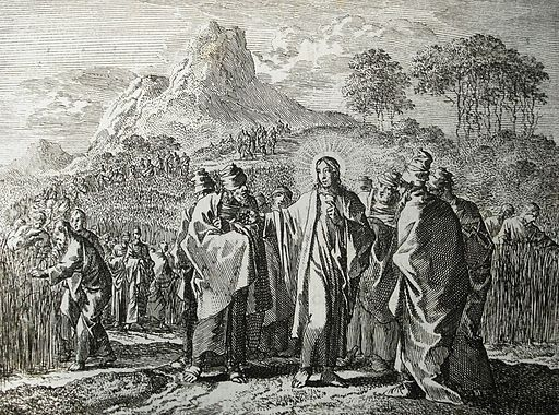 Jan_Luyken's_Jesus_4._Picking_Corn_on_the_Sabbath._Phillip_Medhurst_Collection.jpg